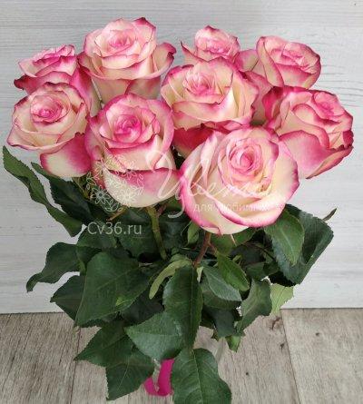 Букет из 9 роз «Розовое наслаждение»