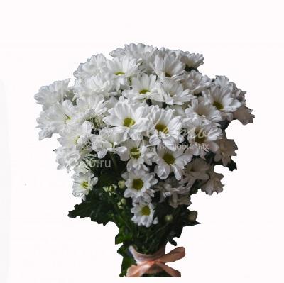 Букет из хризантем «Ромашковое поле»